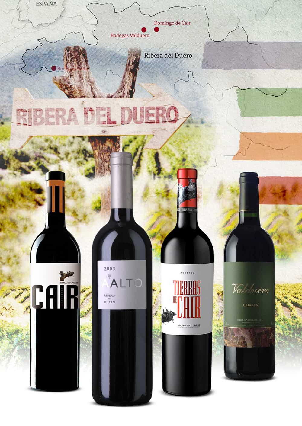 Die wohl angesagte Weinregion Spaniens
